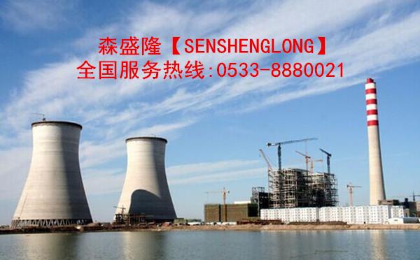 江苏常州电厂循环水阻垢剂SS710产品电厂应用