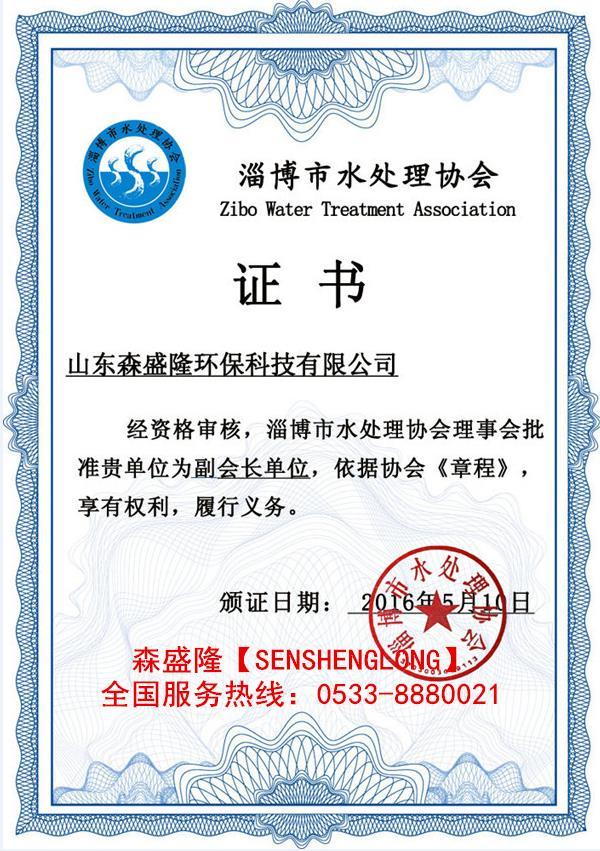 锅炉除垢剂SZ810森盛隆生产厂家